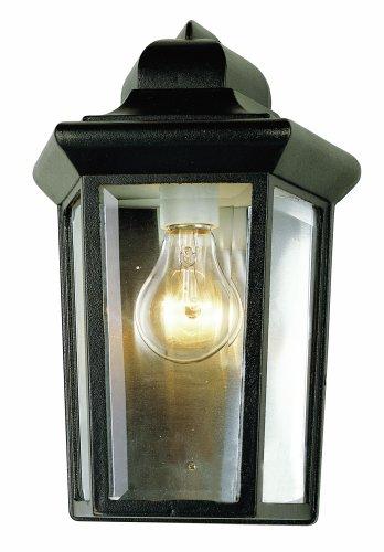 Trans Globe Lighting 4483 VG Outdoor Rendell 12