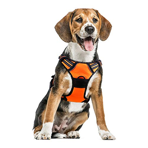 Small Medium Dog Harness Escape Proof Harness Adjustable Vest Harness with Reflective Strap Soft Mesh Metal Clip No Choke Comfort Fit Walking Jacket for Small Medium Puppy (Orange,M)