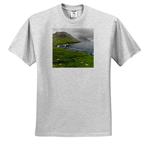 Danita Delimont - Sheep - The West Coast at Nordradalur. Denmark, Faroe Islands - T-Shirts - Adult Birch-Gray-T-Shirt 5XL (TS_277357_25)