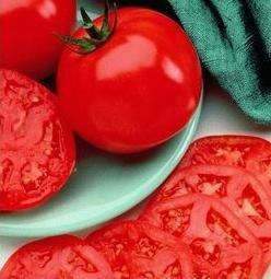 manalucie tomato - 1