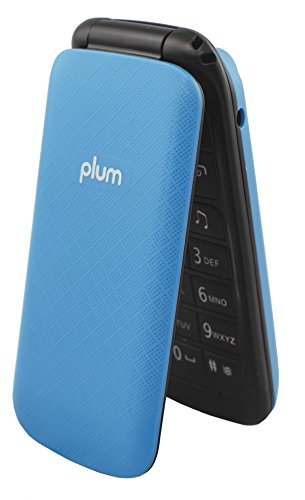 Unlocked - Flip Phone - GSM USA Worldwide Camera Bluetooth FM Radio Dual Sim SD Card Slot MP3 / MP4 - Blue