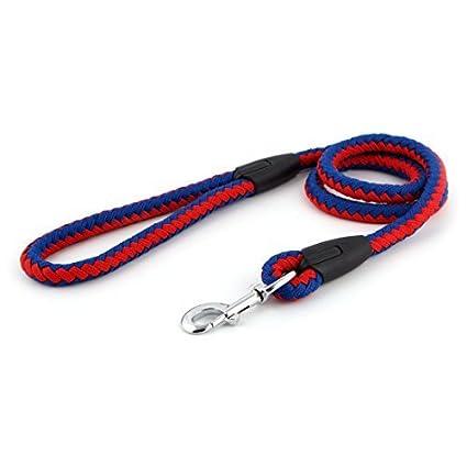 eDealMax perro de Nylon trenzado duradero Martingala Tipo Gancho Formación Plomo Correa de Cuello Azul Rojo