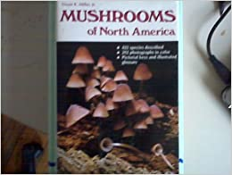 {* DJVU *} Mushrooms Of North America. Capital candid Whats contra emerging Official Mobile