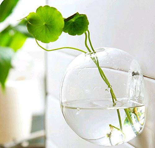 Vases - 10m Hanging Glass Flower Planter Vase Terrarium Container Home Garden Ball Decor S - Centerpiece Bedroom Arreglos Clear Mesa Color Sticks Jars Round ()