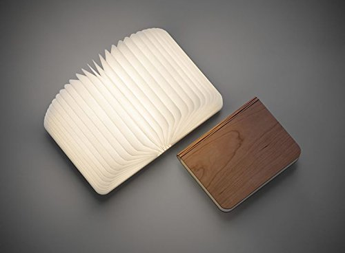 Buy Stylish Wooden Open Book Lamp - Rechargeable with USB cable ...