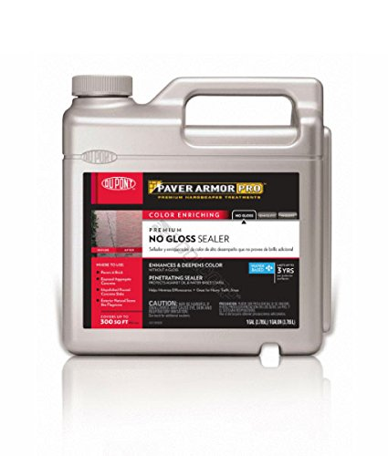 dupont-premium-no-gloss-color-enriching-sealer-1-gal