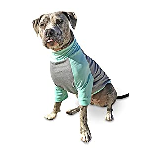 Tooth & Honey big dog/pullover/full belly coverage/lab/boxer/pitbull shirt/mint and grey/light weight shirt (Large)