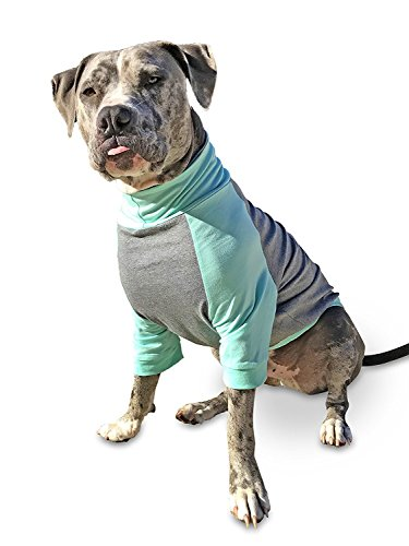 Tooth & Honey big dog/pullover/full belly coverage/lab/boxer/pitbull shirt/mint and grey/light weight shirt (Extra (Dog Sweaters Big Dogs)