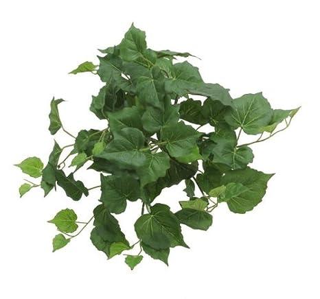 Renaissance 2000 Decorative Cottonwood Leaf Bush, 13-Inch, Fern Green 90279-FRGRN