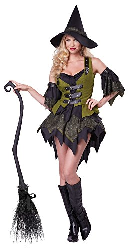 California Costumes Women's Bewitching Babe Sexy Witch Costume, Black/Green, X-Large