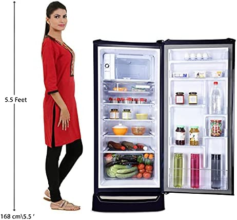 Godrej 215 L 4 Star Inverter Direct-Cool Single Door Refrigerator (RD UNO 2154 PTDI AQ BL, Aqua Blue)