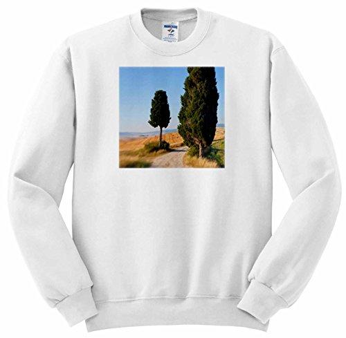 ss-227671-danita-delimont-italy-winding-road-val-d-orica-tuscany-italy-sweatshirts