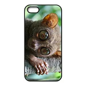 Lemuroid With Big Eyes Hight Quality Plastic Case for Iphone 5s