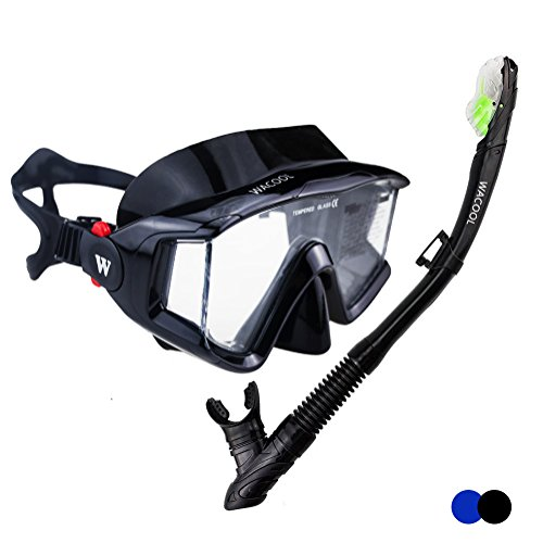 WACOOL Panoramic Wide View Snorkel Package Set for Adults, Anti-Fog Coated Glass Diving Scuba Mask, Full Dry Snorkel (Black)