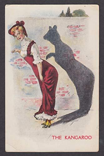 The Kangaroo shadow animal cartoon postcard 1910s