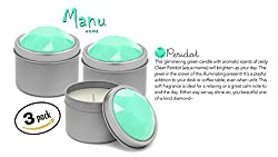 Manu Home Candle Gift SALE Peridot Spa Candle Set of 3~8.25 oz (each Candle is 2.75oz) ~ Perfect for Travel~ Made in USA.