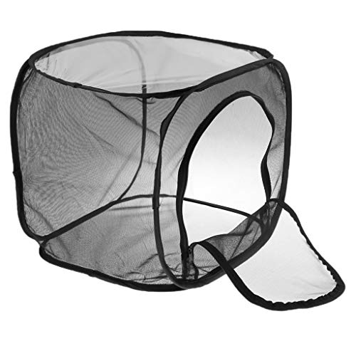 LOVIVER Collapsible Mosquito Insect Box Monarch Butterfly for sale  Delivered anywhere in Canada