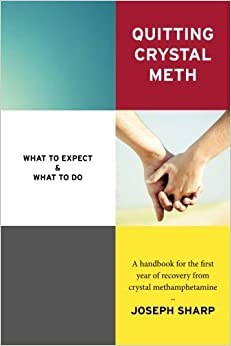 Sarah reyes quitting crystal meth what to expect amp what to do a handbook for the first year of recovery from crystal methamphetamine books pdf file fandeluxe Image collections
