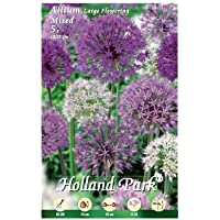 Holland Park bulbi da fiore di molte varietà e colori in sacchetto blister con foto