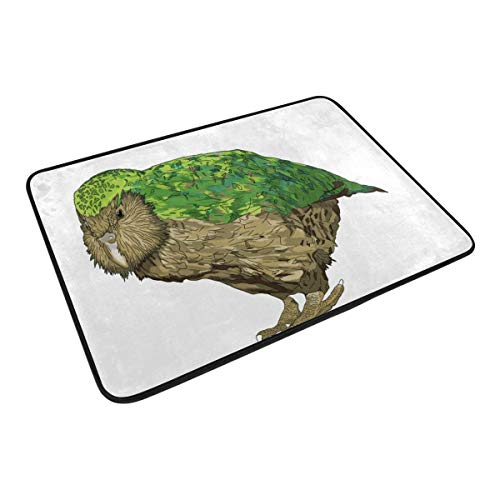 HCmusic Funny Doormat Kakapo New Zealand Bird Door Mat- Welcome Entrance Rug Shoe Scraper for Indoor Outdoor Home, 23.6x15.7 Rubber ()