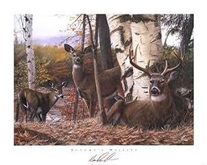 Kevin Daniel – Majestad de otoño Artistica di Stampa (76,20 x 60,96 cm)