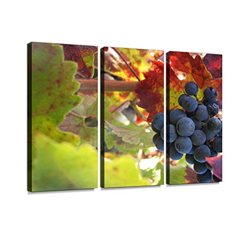 (7houarts Cabernet Canvas Wall Artwork Poster Modern Home Wall Unique Pattern Wall Decoration Stretched and Framed - 3 Piece)
