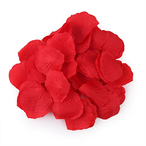 HDE Artificial Rose Flower Petals Wedding Party Decoration (1000 Count, Red Rose (Tulip Petals)