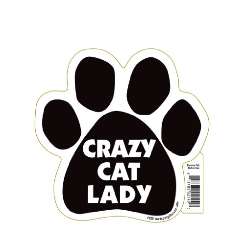 Crazy Cat Lady Pet Magnet