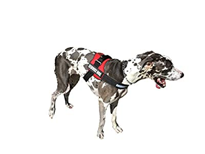 ALBCORP Reflective Service Dog Vest / Harness, Woven Polyester & Nylon, Neoprene Padding, RED / BLACK