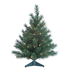 Gerson Colorado Spruce Lighted 2 Foot High Christmas Tree - Battery Operated with Timer - Artificial Tree with Warm White LED Lights - Indoor/Outdoor with Seam Sealed Battery Compartment 107