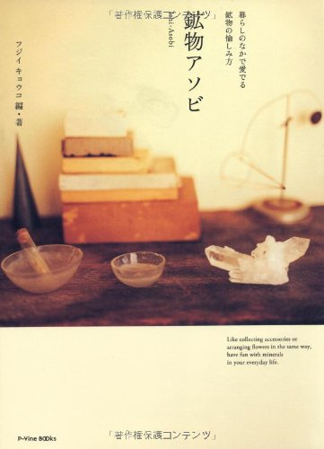 鉱物アソビ 暮らしのなかで愛でる鉱物の愉しみ方 (P-Vine Books)