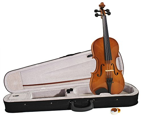 windsor-mi-1006-full-size-violin-including-case