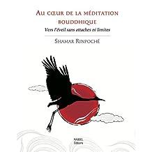 Au coeur de la méditation bouddhique - Vers l'éveil sans attaches
