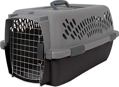 Petmate 21084 Aspen Pet Porter Heavy-Duty Pet Carrier With Secure Lock, Up to 15 lbs, Light Gray from Petmate