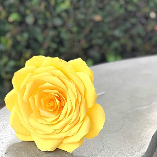 (Paper Coffee Filter Rose)