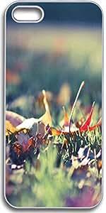 Dseason Iphone 5S case, Slim Hard Unique Design Fallen maple leaves