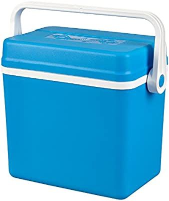 Nevera portátil 10 L o 17 litros, azul, 10 Litros: Amazon.es ...