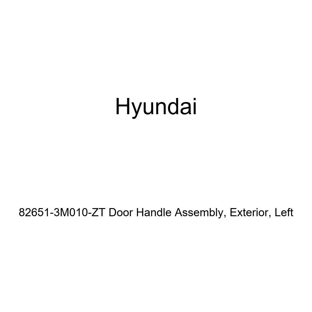 Exterior Genuine Hyundai 82651-3M010-ZT Door Handle Assembly Left
