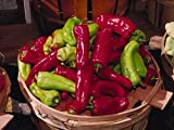 75 CUBANELLE PEPPER (Italian Sweets / Banana Pepper / Italian Frying Pepper) Capsicum Annuum Vegetable Seeds