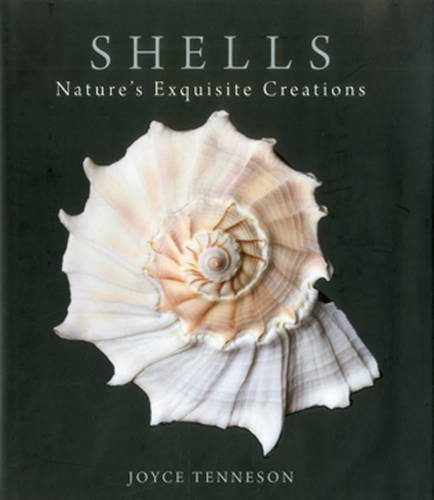 Joyce Tenneson,s detailed photographic studies of luminous sea shells adrift on a velvet-soft background remind us that startling beauty exists even in the most ordinary places. These surprising images give us a unique window into these secret lives ...