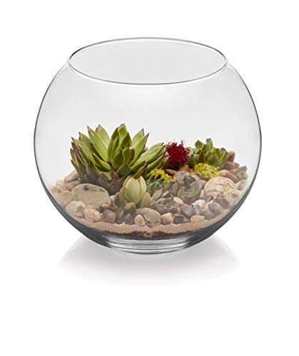 Libbey Bubble Ball 2-piece, 10-inch Glass Bowl Set