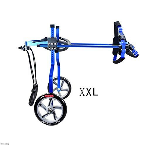MEI Pet Backpacks 2-Wheel Pet Bicycle, Adjustable Dog Wheelchair, Scooter, Disabled Dog, Auxiliary, Leg Rehabilitation, Rear Support Wheelchair Red, Blue (Color : Blue, Size : XXL) - Manual Tote Wheelchair Carrier