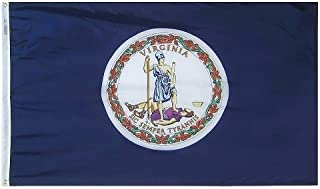 product image for All Star Flags 5x8' Virginia Nylon State Flag - All Weather, Durable, Outdoor Nylon Flag
