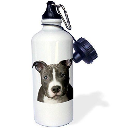 Moson水ボトルギフト、American Pit Bull Terrier Puppyホワイトステンレススチールウォーターボトルforレディースメンズ21oz B07CYPY9KN