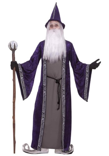Forum Novelties Men's Wizard Adult Costume, Purple, Standard (Wizard Costume For Adults)