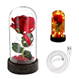 Do you want to spice up and add a little magic to your décor? Are you searching for the gift for your lover? Have you been searching for a safe and reliable night light which inspires your kids? Our Beauty and the Beast Rose Light is your best choice...