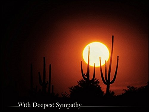 - Leanin' Tree Deluxe Sympathy Pack of 6 Greeting Cards Desert Sunset