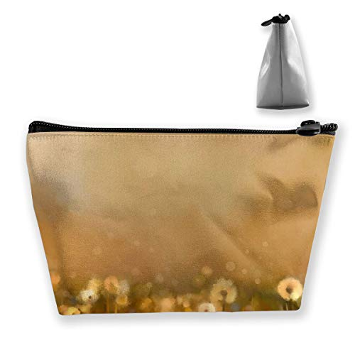 RobotDayUpUP Printed Glass Splashbacks Vintage Dandelions Womens Travel Cosmetic Bag Portable Toiletry Brush Storage Durable Pen Pencil Bags Accessories Sewing Kit Pouch Makeup Carry Case