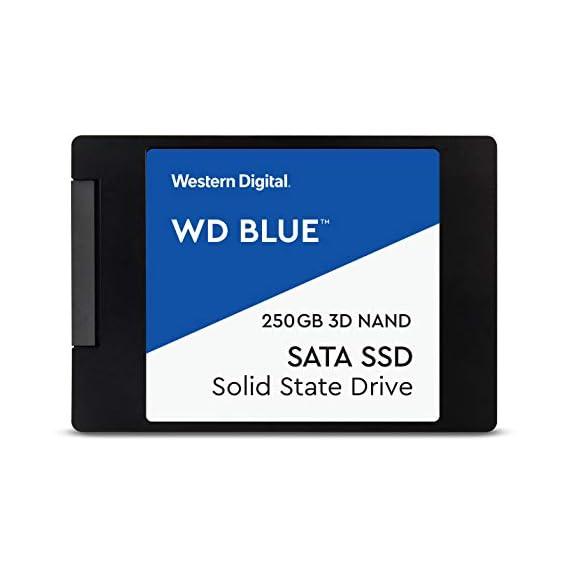 WD Blue 250GB M.2 Internal Solid State Drive (WDS250G2B0B)