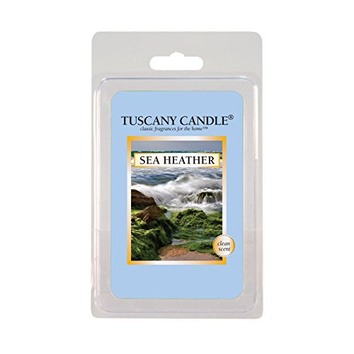 Langley Empire Candle 2.5oz Fragrance Bars- Sea Heather